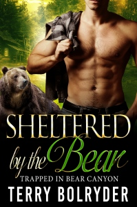 sheltered-by-the-bear-kindle